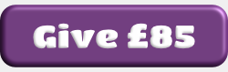 Give £85 button.png